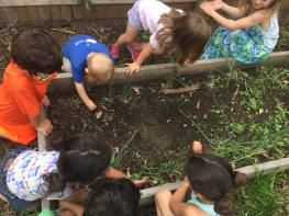 preschool daycare childcare school sprouts family champaign urbana kids montessori waldorf steiner experiential cooking toddler 2 year old art nature forest kindergarten